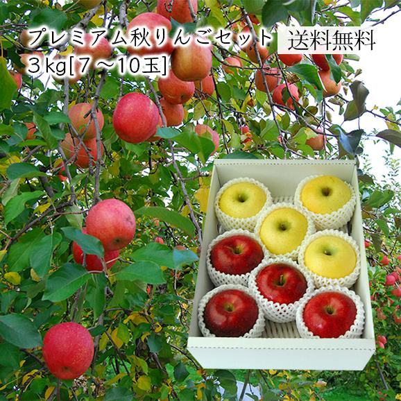 プレミアムりんごセット約3kg(7~10玉)[化粧箱入]