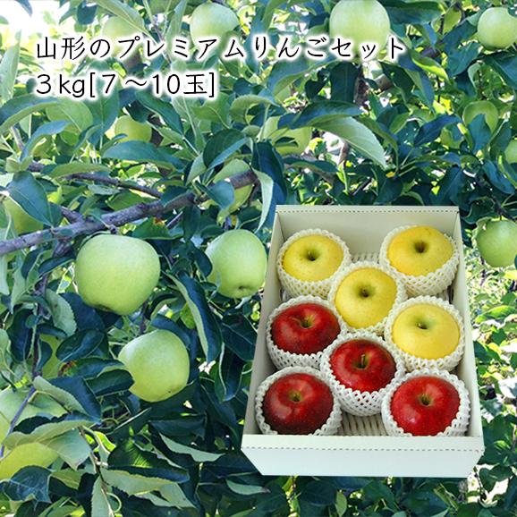 山形のプレミアムりんごセット 3kg(7-10玉)【化粧箱入】