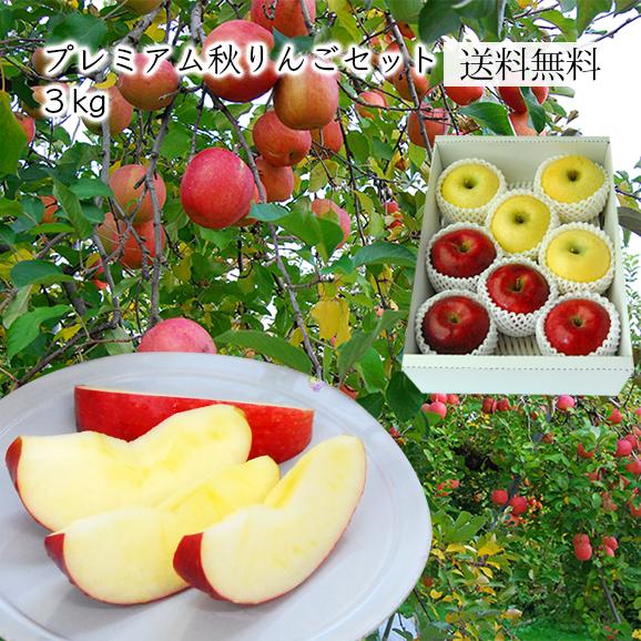 プレミアム秋りんごセット約3kg(7~12玉)[化粧箱入]