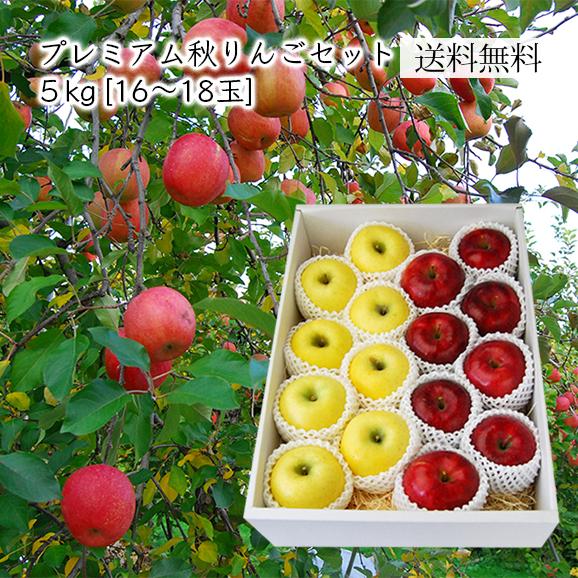 プレミアムりんごセット約5kg(16~18玉)[化粧箱入]