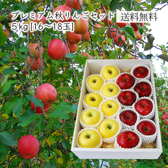 プレミアム秋りんごセット約5kg(16~18玉)[化粧箱入]