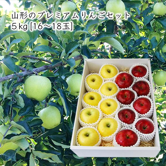 山形のプレミアムりんごセット 5kg(16-18玉)【化粧箱入】