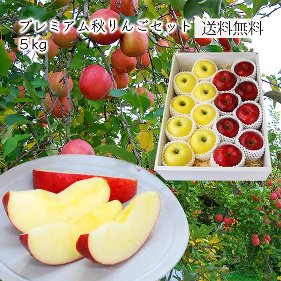 プレミアム秋りんごセット約5kg(16~20玉)[化粧箱入]