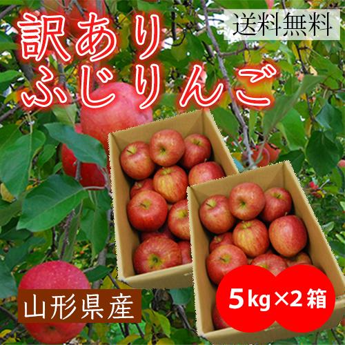 山形県産【訳あり】ふじりんご10kg [5kg×2箱]