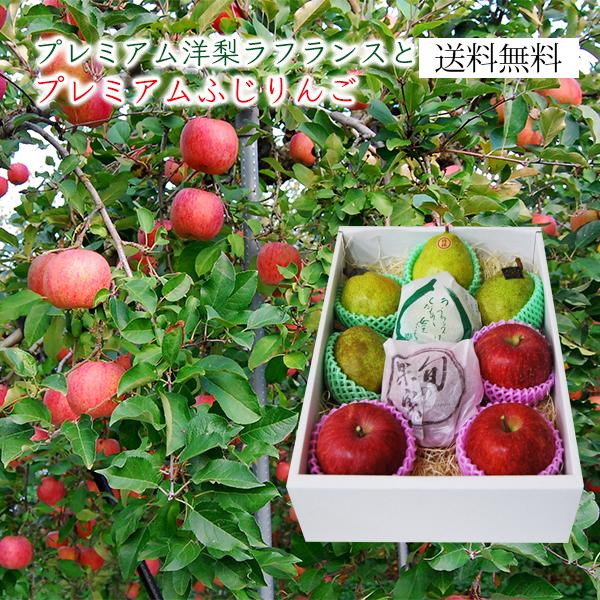 プレミアム洋梨ラフランスとふじりんご3kg(8~12玉)[化粧箱]