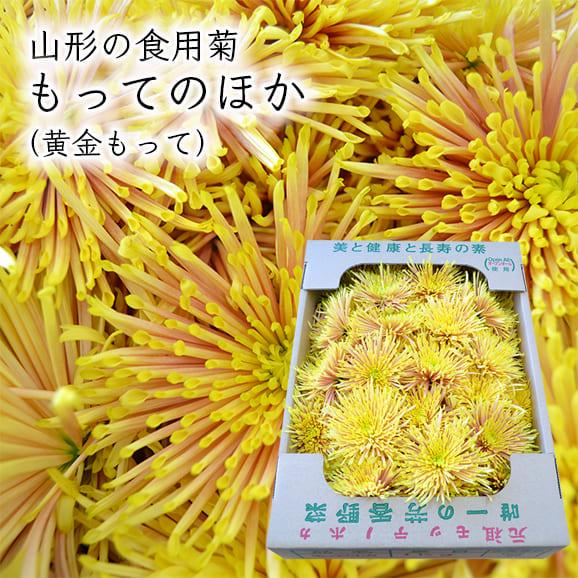 山形の食用菊もってのほか1kg(黄金もって)