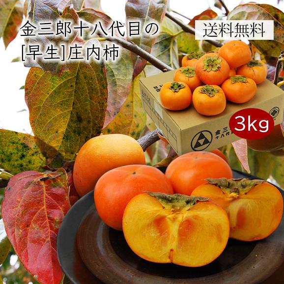 《早生》金三郎十八代目の庄内柿約3kg(20~24玉)