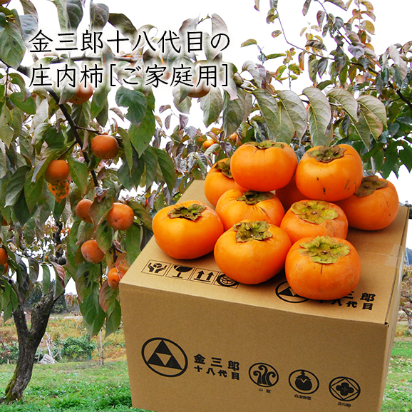 【ご家庭用】金三郎十八代目の庄内柿M~MAサイズ5kg