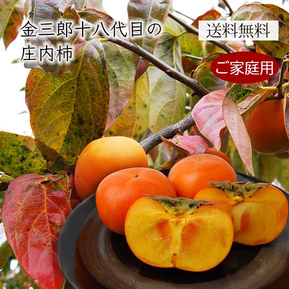 《ご家庭用》金三郎十八代目の庄内柿約5kg(玉数おまかせ)