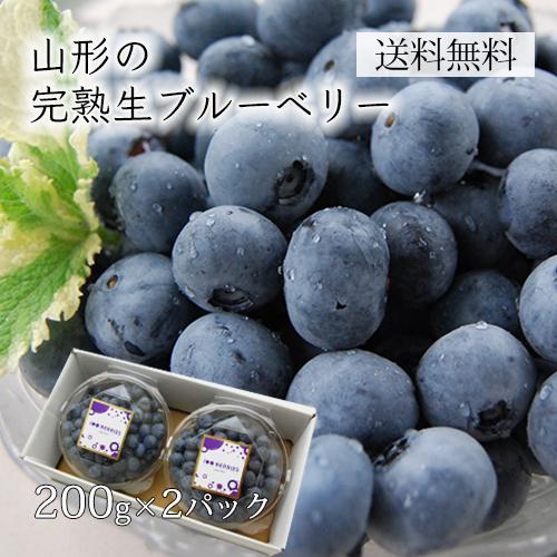 山形の完熟生ブルーベリー400g(200×2パック)[箱入]