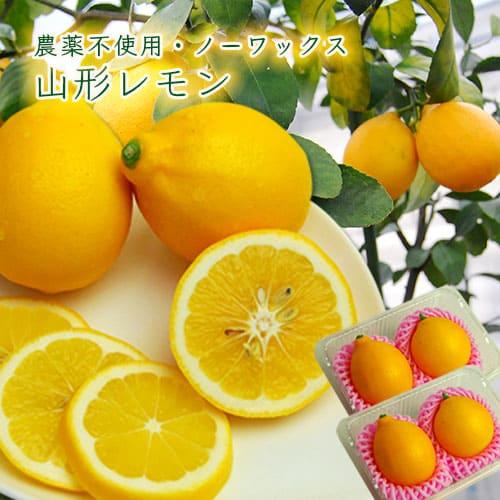 山形レモン×4玉(農薬不使用・ノーワックス)箱入