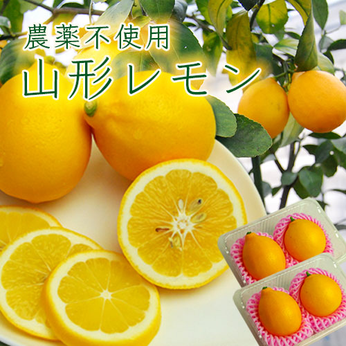 山形レモン