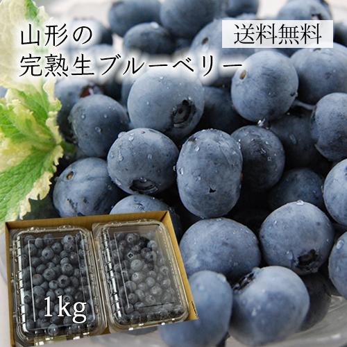 [送料無料]山形の完熟生ブルーベリー1kg(500×2パック)[箱入]