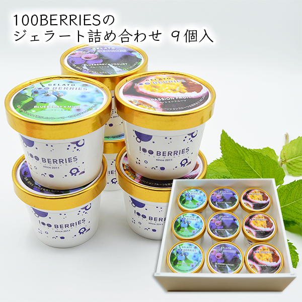 100BERRIESのジェラート詰め合せ9個入[箱入]