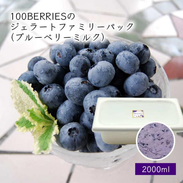 100BERRIESのジェラートファミリーパック2000ml(ブルーベリーミルク)[箱入]