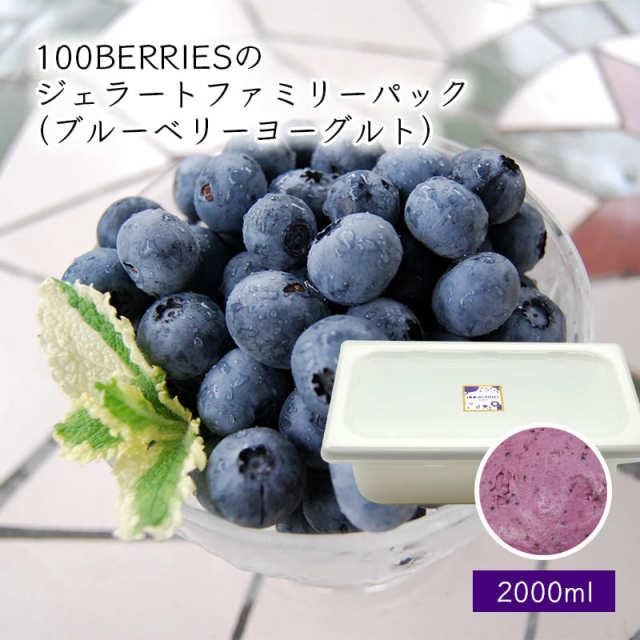 100BERRIESのジェラートファミリーパック2000ml(ブルーベリーヨーグルト)[箱入]