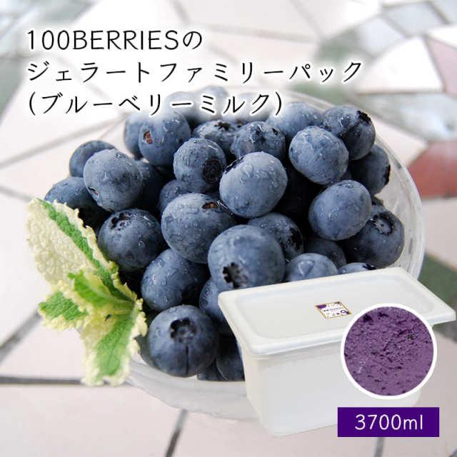 100BERRIESのジェラートファミリーパック3700ml(ブルーベリーミルク)[箱入]