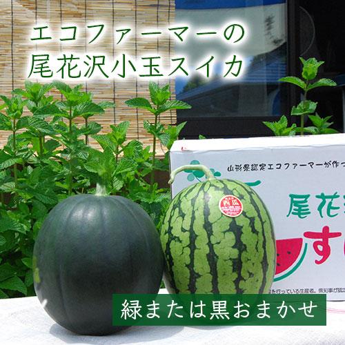 エコファーマーの尾花沢スイカ[小玉×2玉(緑・黒おまかせ)]