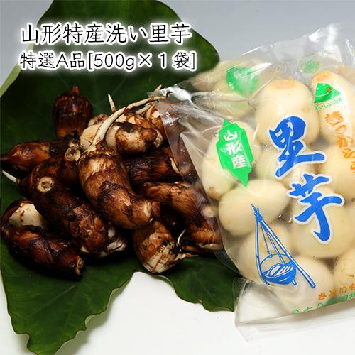 山形特産洗い里芋(特選A品500g×1袋)