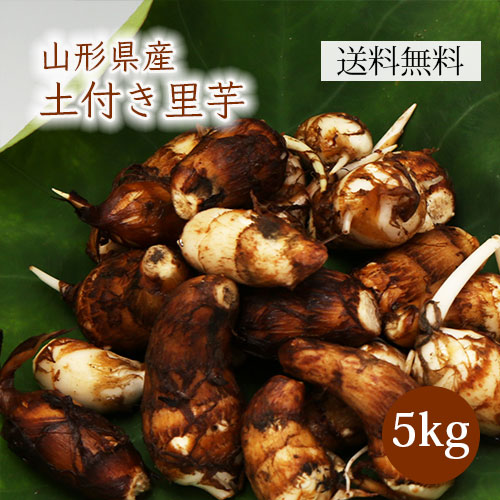 山形特産土付き里芋5kg(特選A品)