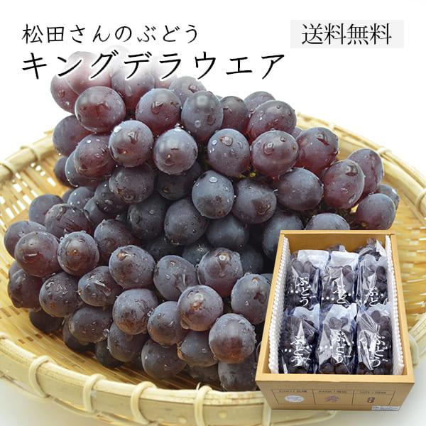 松田さんのぶどうキングデラウェア1.8kg(2L~3L/6~10房程度)