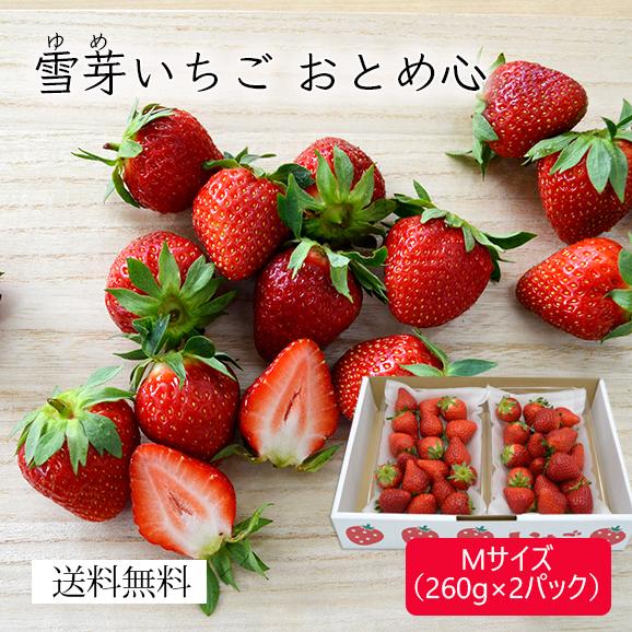 雪芽いちごおとめ心Mサイズ(260g×2パック)