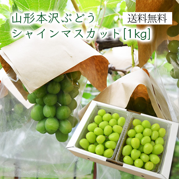 山形本沢ぶどうシャインマスカット1kg(500gパック×2)