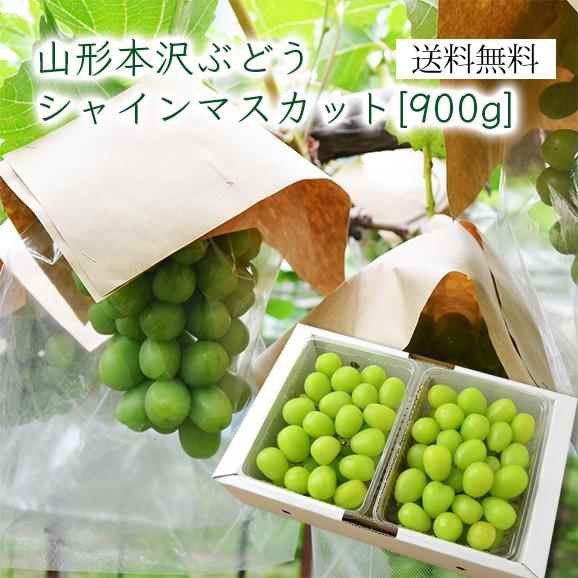 山形本沢ぶどうシャインマスカット900g(450gパック×2)