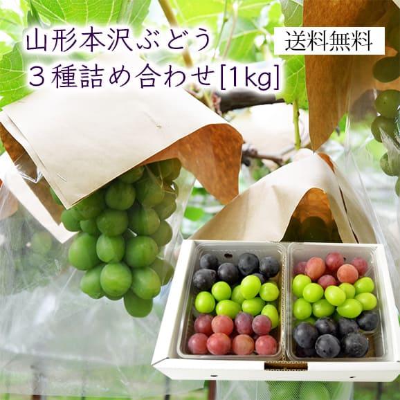 山形の本沢ぶどう3種詰め合わせ約1kg(パック入)[500g×2]