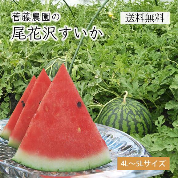 菅藤農園の尾花沢すいか1玉(4L~5Lサイズ)