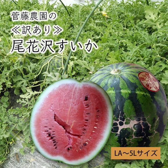 《訳あり》菅藤農園の尾花沢すいか1玉(LA~5Lサイズ)