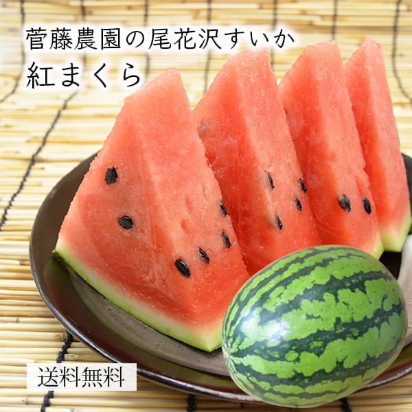 菅藤農園の尾花沢すいか紅まくら1玉(2L~4Lサイズ)