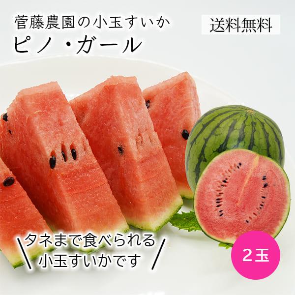 菅藤農園の小玉すいかピノガール2玉(約2kg×2玉)