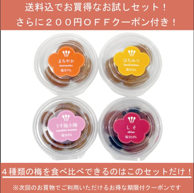 お試しセット【次回のお買物に使える200円引クーポン付!】