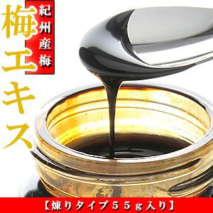 梅肉エキス 紀州梅使用 塩分0% 55g 【梅エキス】