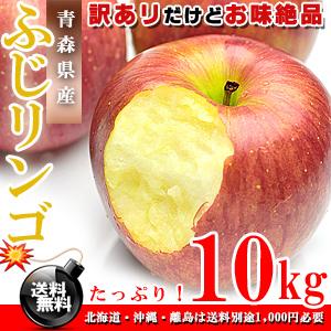 青森県産 ふじりんご お徳用 10kg