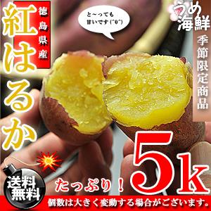べにはるか  1箱 5kg【送料無料】紅春香 さつまいも 蜜芋