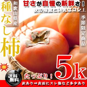 今が旬♪ 種なし柿 和歌山県産 甘熟 柿 5kg [訳あり]かき【送料無料】※代金引換不可【ギフト】