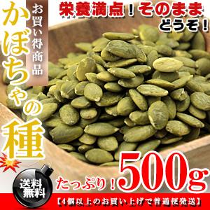 かぼちゃの種 500g  【送料無料】無塩 無油 ロースト F