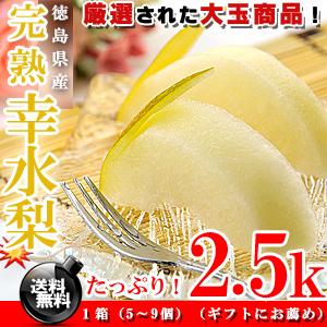 厳選!徳島県産 幸水梨 こだわりの 完熟 梨 2.5kg(5〜9個) 【高糖度】なし※代金引換不可
