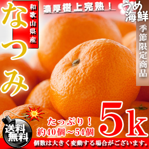 【5月上旬より発送開始】超希少商品♪和歌山県 なつみ (2S〜2Lサイズ) 5kg【送料無料】