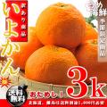 いよかん 完熟 お試し 3kg(M〜2Lサイズ)伊予柑【訳あり】【送料無料】