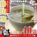 深みのあるコク♪静岡県産 掛川茶 深蒸し茶 ティーパック 40袋(20袋×2個)【送料無料】【掛川茶】【静岡茶】※代金引換不可