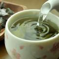 うめ海鮮 めかぶ茶 梅味 120g(60g×2袋)【送料無料】