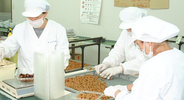 紀州の梅を通信販売で取り扱う和歌山うめ海鮮