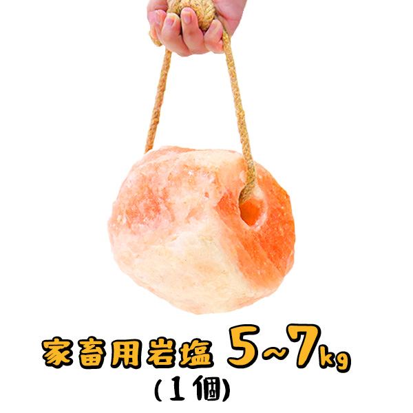 梅研本舗の家畜用ヒマラヤ岩塩