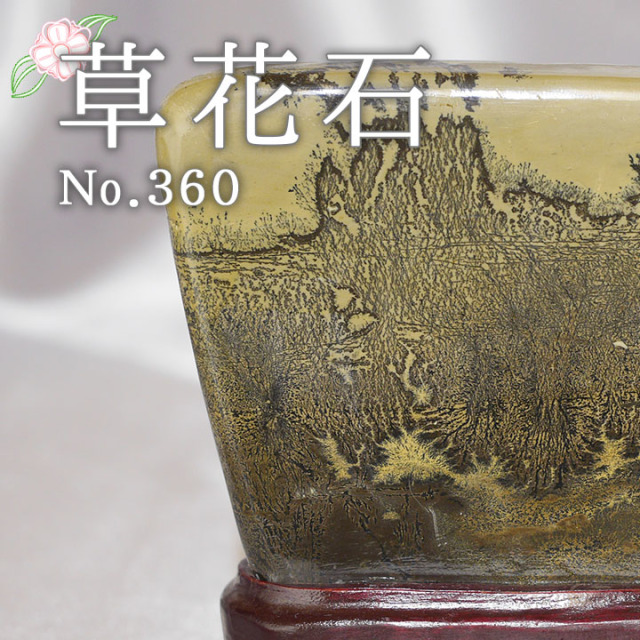 【ピクチャーストーン】草花石No.360(観賞用鉱石)