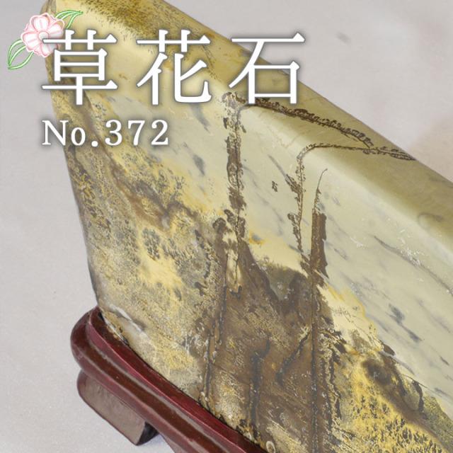 【ピクチャーストーン】草花石No.372(観賞用鉱石)