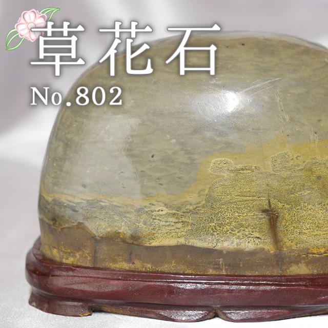 【ピクチャーストーン】草花石No.802(観賞用鉱石)
