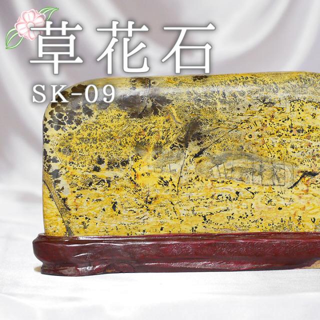 【ピクチャーストーン】草花石SK-09(観賞用鉱石)